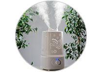 Humidifiers and Dehumidifiers